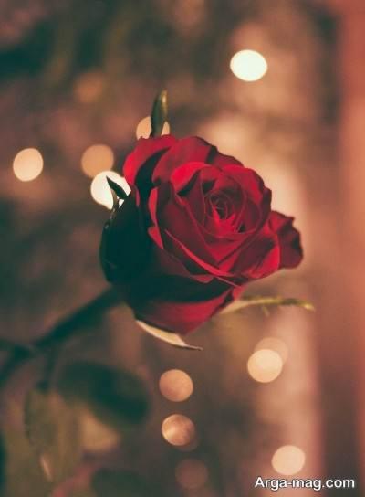 متن زیبا در مورد عشق