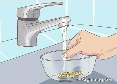 خیس کردن هسته درون آب