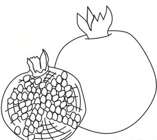 نقاشی انار برای کودکان با چند طرح ساده و جذاب