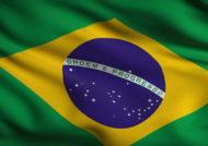 کشور برزیل بزرگترین کشور آمریکا است