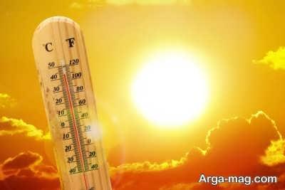 تهدیدات گرمایش زمین برای موجودات زنده