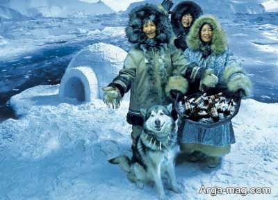 سر هایی از قطب شمال