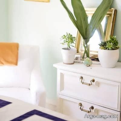 نگهداری گیاه در خانه برای حفظ آرامش