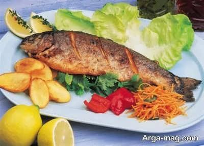 آیا مصرف ماهی به تقویت غضروف هامنجر می شود