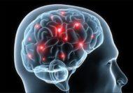 اثرات تقویت حافظه بلند مدتدر زندگی روز مره