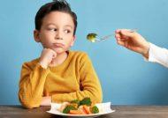 عسل جزء خوراکی های مضر برای کودکان می باشد