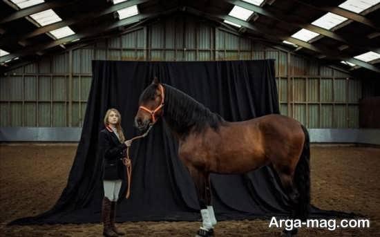 گلچین ژست عکس با اسب