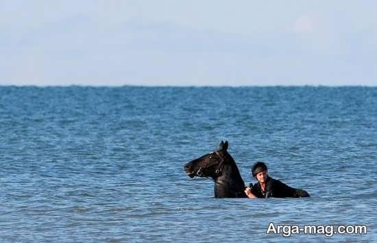 ایده ژست کنار لب دریا با اسب