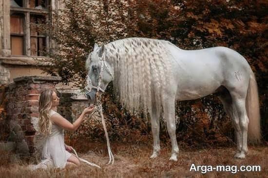 ایده عکس دخترانه با اسب