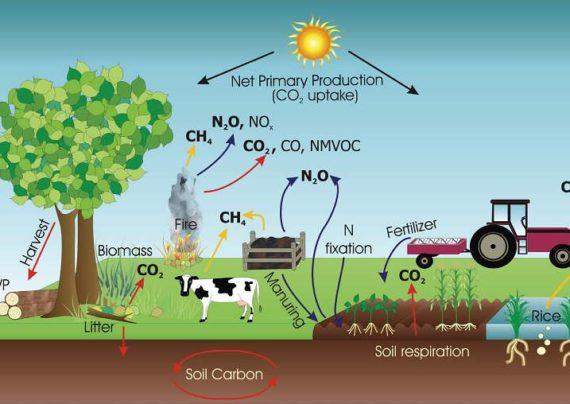 تاثیرات گازهای گلخانه ای بر کره زمین