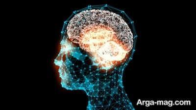 کاربرد انواع هوش در بدن