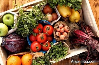 مواد غذایی مناسب در دوره بلوغ و نوجوانی