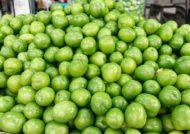 آشنایی با خواص گوجه سبز و تاثیر شگفت انگیز آن در رفع بیماری ها