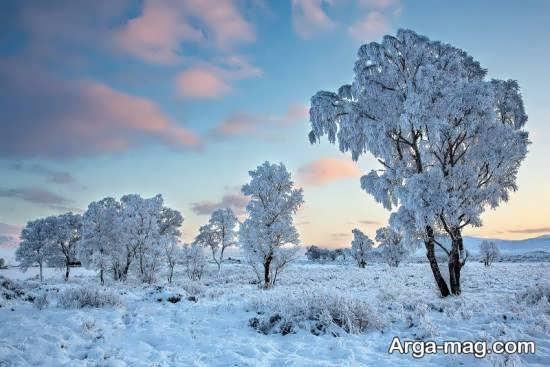 گالری منظره زمستانی زیبا