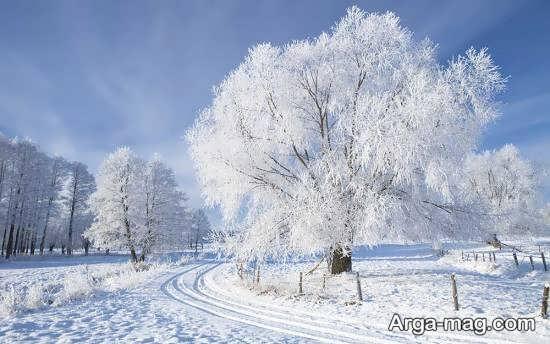 گلچین منظره زمستانی