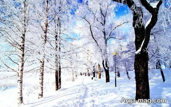 تصویر زیبا و دوست داشتنی از منظره زمستانی