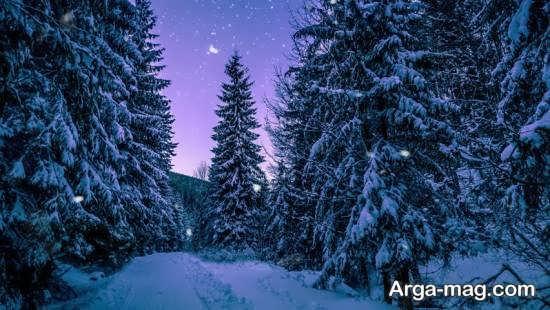 چشم انداز جذاب و خیال انگیز زمستانی
