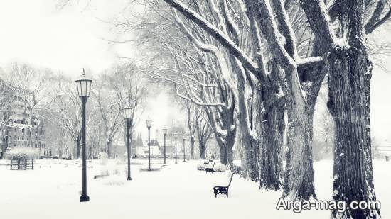 منظره جذاب و دیدنی زمستانی