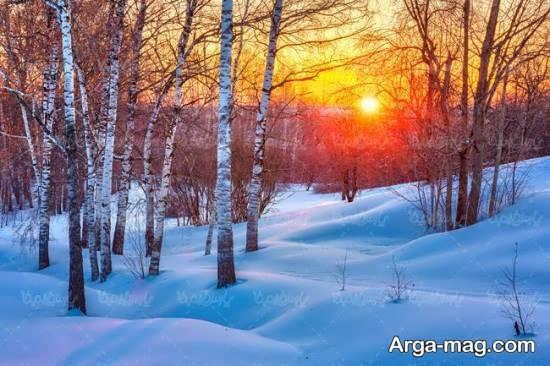 چشم انداز زمستانی جذاب و شیک