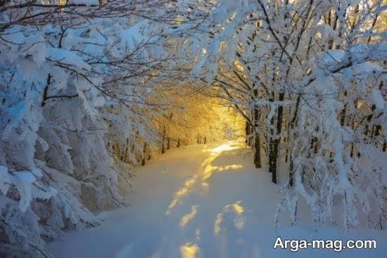 عکس مناظر طبیعی در فصل زمستان