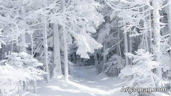 چشم اتداز زمستانی جدید