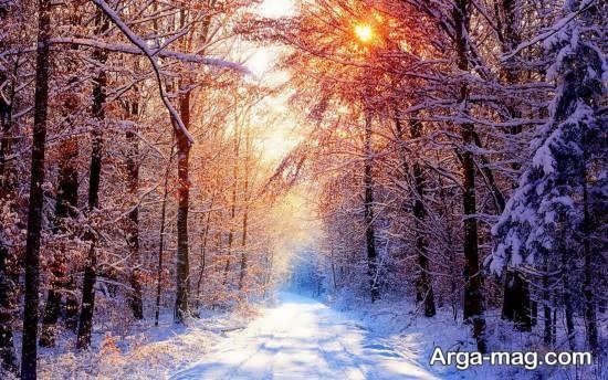 عکس جدید چشم انداز زمستانی