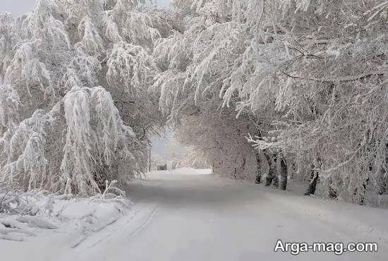 عکس تماشایی از نمای زمستانی