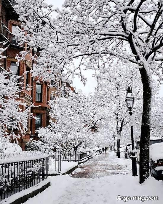 عکس طبیعت زمستانی هنری و لاکچری