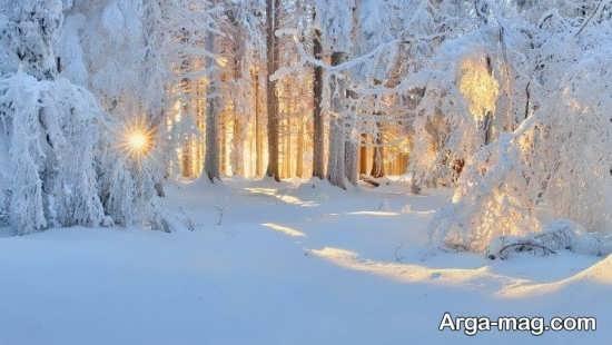 تصویر دلنشین چشم انداز زمستانی