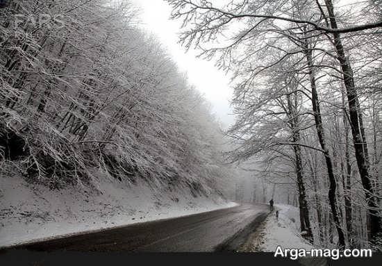 عکس طبیعت زمستانی جدید و دلنشین