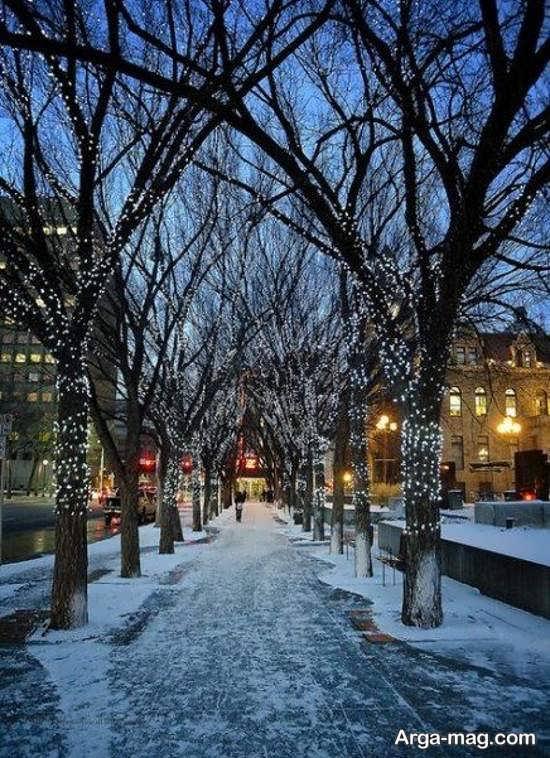 تصویر تماشایی طبیعت زمستانی