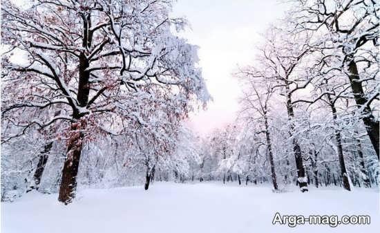 سری جدید نمای زمستانی