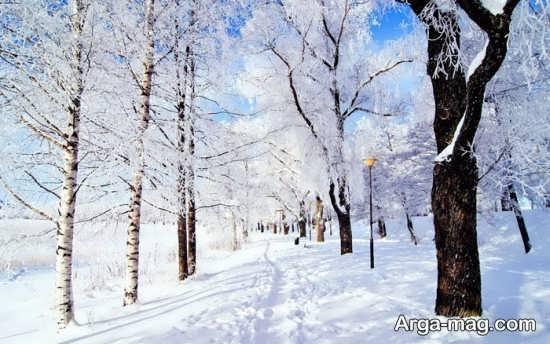 گلچین عکس طبیعت زمستانی