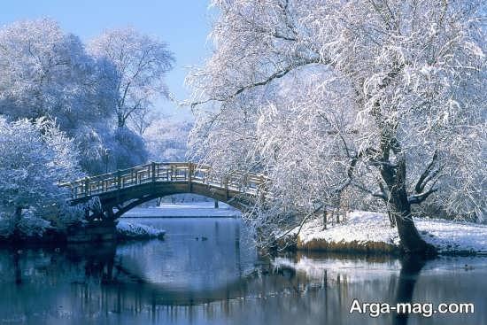 تصویر خاص و جذاب از منظره زمستانی