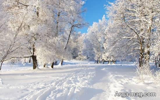 عکس منظره زمستانی بسیار زیبا