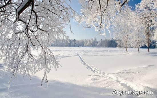 انواع عکس طبیعت زمستانی