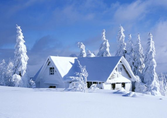 آشنایی با انواع عکس طبیعت زمستانی