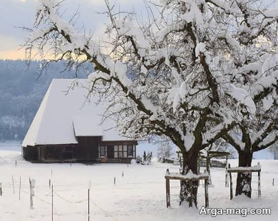 گالری جدید عکس طبیعت زمستانی