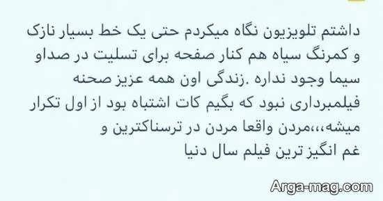 پست شیلا خداد در رابطه با سقوط هواپیمای اخیر