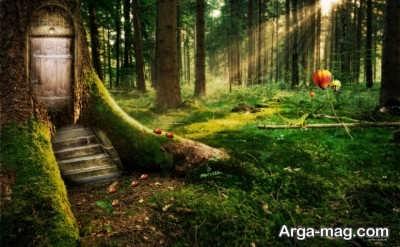 تعبیر خواب جنگل و بیشه