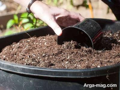 استفاده از خاک مقوی برای بستر کاشت