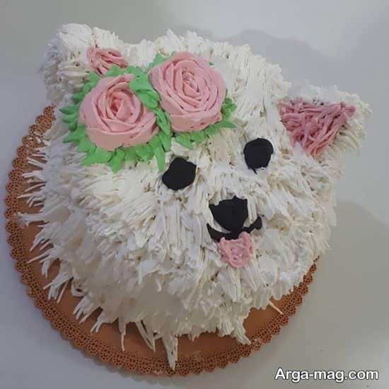 تم گربه ای فانتزی برای کیک