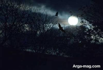 تعبیر خواب تاریکی به همراه عکس