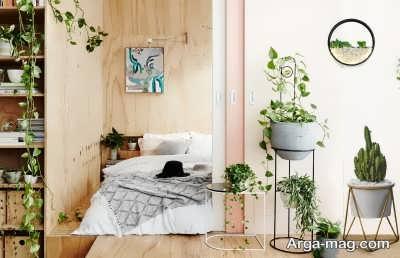 گیاهانی زیبا مناسب برای اتاق خواب
