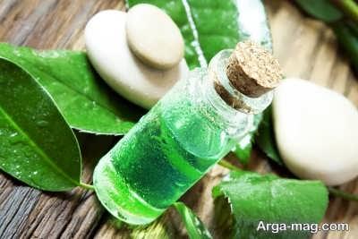 انواع ویژگی های روغن درخت چای