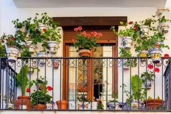 گالری متنوع و متفاوت الگوی باغ کوچک
