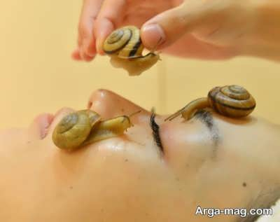 چگونگی حلزون درمانی