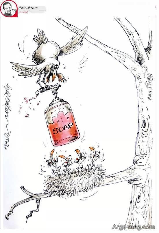 رعایت بهداشت به پرندگان هم رسید!/عکس کارتونی
