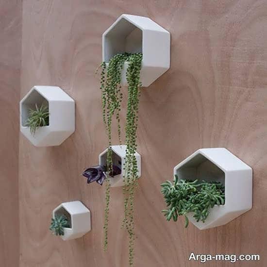 تزیینات منزل با گل های هوازی