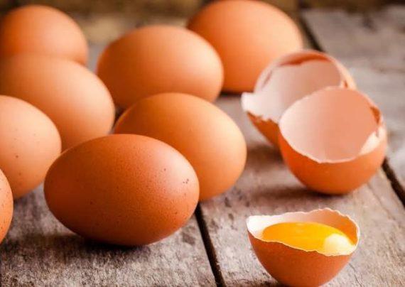 آشنایی با تعبیر خواب تخم مرغ
